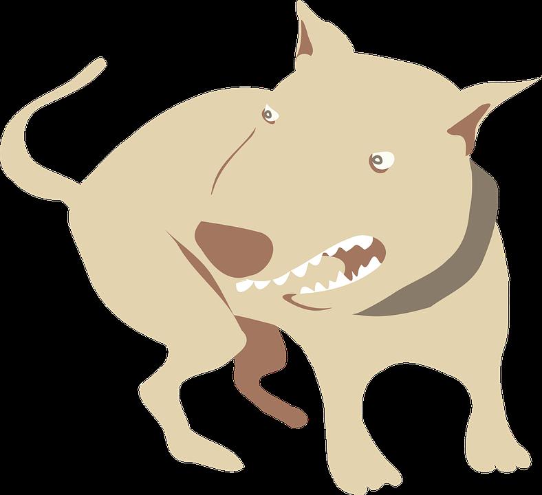 perro agresivo