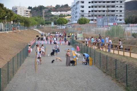 Agility parque canino