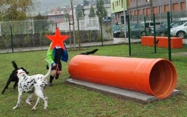 Agility parque canino 6