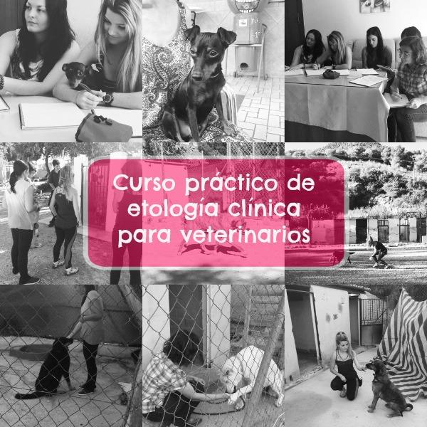 Curso práctico de etología para veterinarios