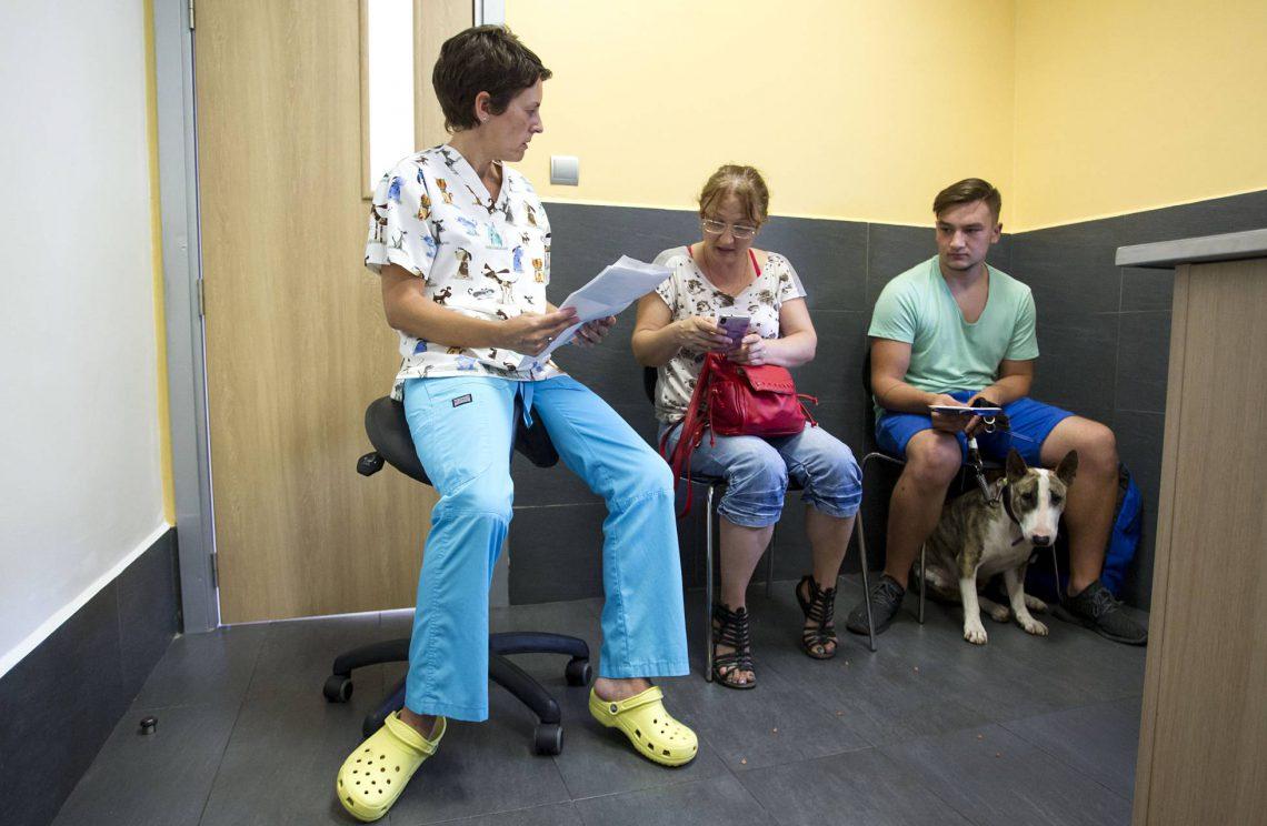 El perro necesita Prozac. El País