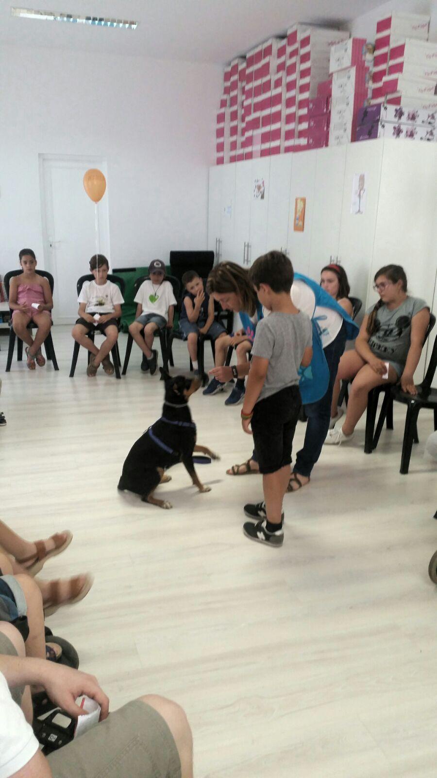 terapias con perro Patas Arriba