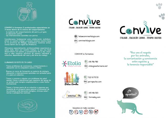Convive 2