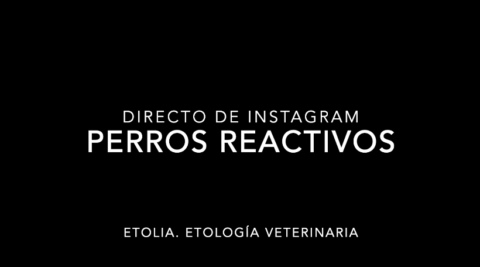 Perros reactivos