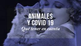 Animales y covid19