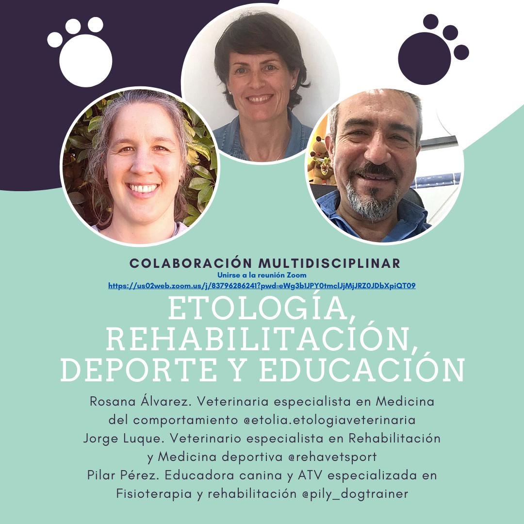 Etología, rehabilitación, deporte y educación
